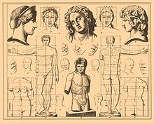 Iconographic Encyclopedia of Science, Literature and Art 529.jpg