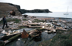 Bear Island (Norway) - Remnants of whaling station at Kvalrossbukta, Bear Island