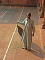 India-0248 - Flickr - archer10 (Dennis).jpg