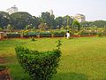 India-7826 - Flickr - archer10 (Dennis).jpg