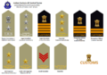 Indian Customs Insignia.png
