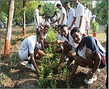 world environment day world environment day in