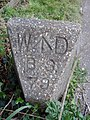 Interesting Stone - geograph.org.uk - 792337.jpg