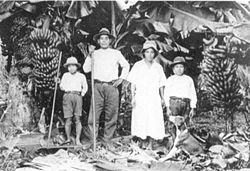 Japanese immigrant family in Brazil 02.jpg