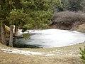 Jazierka na Čelkovou Lehotou - panoramio.jpg