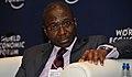 Jean-Louis Ekra, 2009 World Economic Forum on Africa.jpg