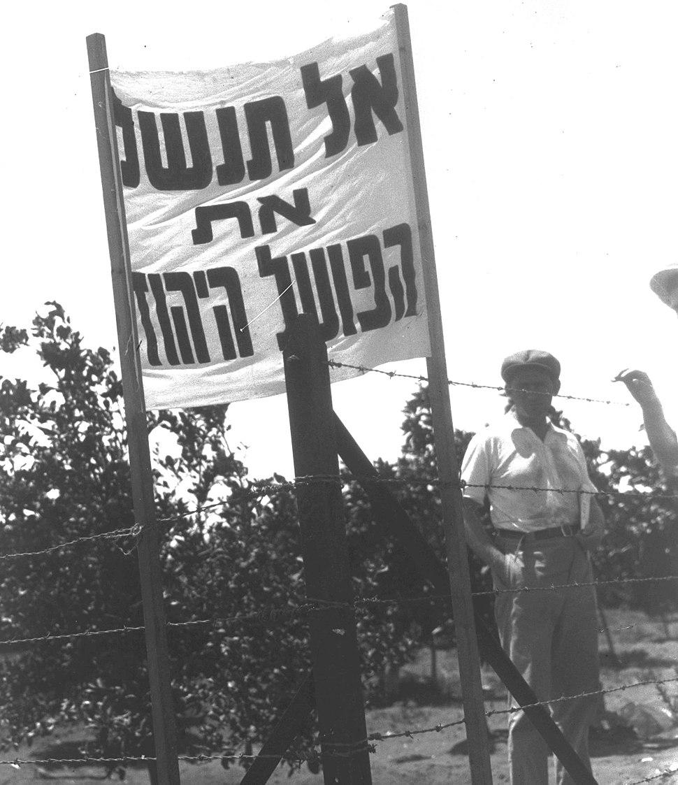Jewish demonstrators outside the Rapaport orange grove in Kfar Saba, demanding the employment of Jewish workers D19-069