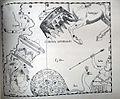 "Johannes Hevelius - Prodromus Astronomia - Volume III ""Firmamentum Sobiescianum, sive uranographia"" - Tavola AAA - Corona Australis.jpg"