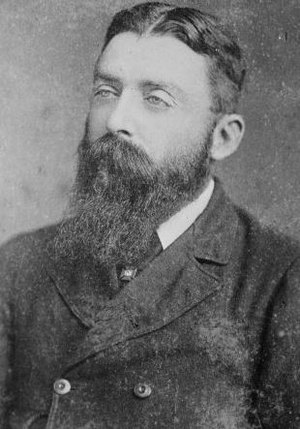 John Sheehan (New Zealand politician) - Sheehan circa 1884