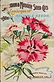Johnson & Musser Seed Co.'s Catalogue of Reliable Seeds, 1900, cover.jpg
