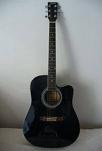 Johnson electric acoustic guitar 1.jpg