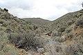 Jumbo Grade Trail - panoramio (66).jpg