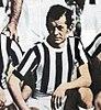 Juventus Football Club 1951-1952 - Ermes Muccinelli.jpg