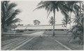 KITLV - 12596 - Kleingrothe, C.J. - Medan - Fermentation barn on tobacco plantation Tanjung Morawa (Tandjoeng-Morawa) near Batangkuwis in Deli - 1903.tif