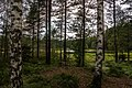 KOUKUN MAJALLA 8.8.2015 - panoramio (3).jpg