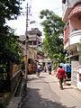 Kalikingkar Roy Choudhury Road - Barisha - Kolkata 2011-10-03 030295.JPG