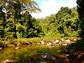 Khao Sok, 2014 December - panoramio (40).jpg