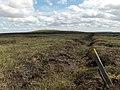 Killhope Moor - geograph.org.uk - 214467.jpg