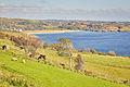 Killybegs Peninsula on the North Atlantic Ireland 12280231853 o.jpg