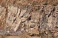 Kirchberger Granit der Kirchberger Granitgrube...2H1A7382ВЕ.jpg