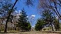 Kirovskiy rayon, Khabarovsk, Khabarovskiy kray, Russia - panoramio (243).jpg