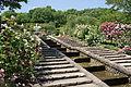 Kitayama Botanical Garden02n4592.jpg