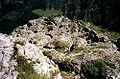 KleinerPal fortifications1914-1918 Karnische.jpg