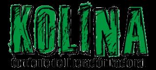 Kolina Argentine political party