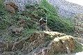 Kovová plastika čerta na hradě Trosky (Q80438148) 02.jpg