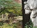 Kragenbär von Ernst Freese im Berliner Zoo - aufgestellt 1915 - Foto Simone Guski.jpg