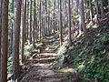 Kumano Kodo Dainichigoe World heritage32.JPG
