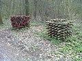 Kunst im Pleidelsheimer Wald - geo.hlipp.de - 34788.jpg