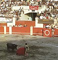 La Corrida - Maracay.jpg