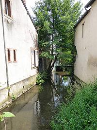 La Nère à Aubigny-sur-Nère (1).jpg