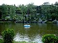 Lago Negro12.jpg