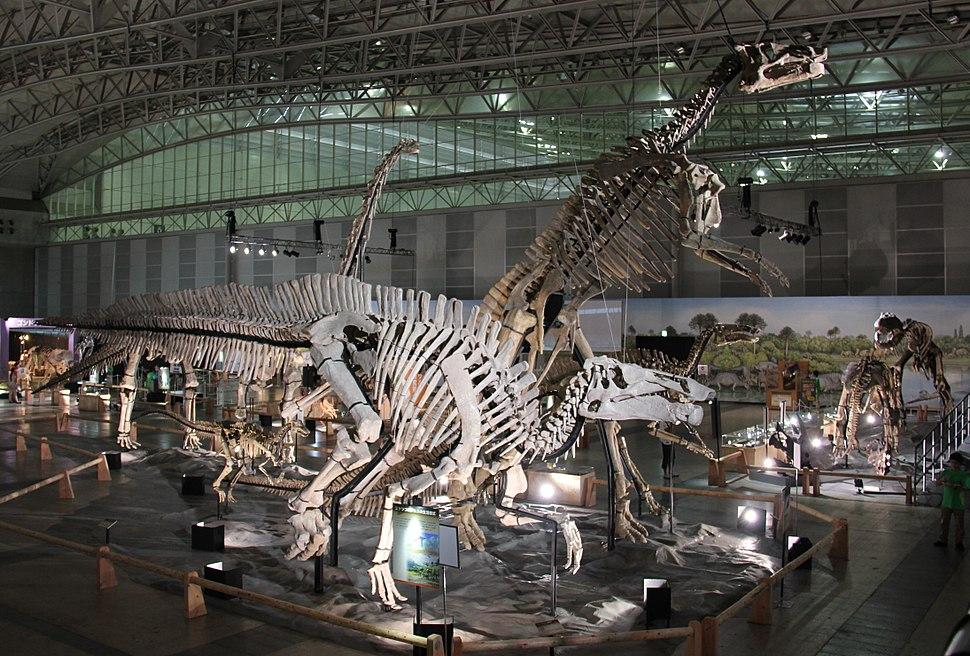 Laika ac Dino Kingdom 2012 (7882291466)