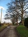Lane at Burton Grange - geograph.org.uk - 320638.jpg