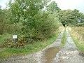 Lane to Ynys Graianog - geograph.org.uk - 230768.jpg