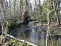 Langley Brook, Middleton Lakes RSPB Reserve - geograph.org.uk - 1112231.jpg