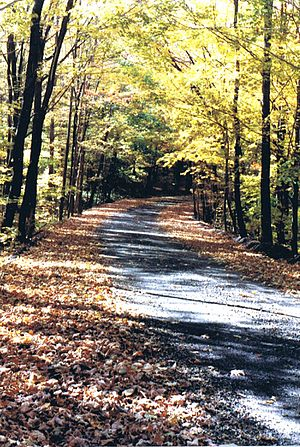 Westmoreland County, Pennsylvania - Autumn on a small state road near the Pennsylvania Turnpike in Laurel Mountains.