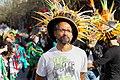 Le Carnaval des Deux Rives (46557022414).jpg