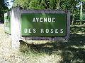 Le Touquet-Paris-Plage (Avenue des Roses).JPG