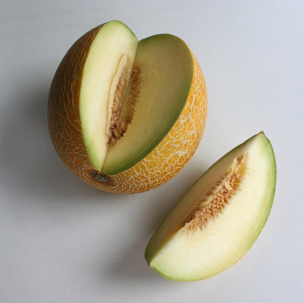 Lebensmittel-Galiamelone1-Asio