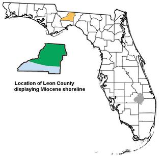 Leon County, Florida paleontological sites