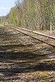 Ligne de Bourron-Marlotte à Malesherbes - 2013-04-21 - IMG 9335.jpg