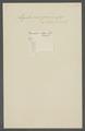 Ligula monogramma - - Print - Iconographia Zoologica - Special Collections University of Amsterdam - UBAINV0274 105 18 0003.tif