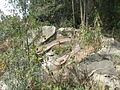 Lingshan Islamic Cemetery - turtle tomb - DSCF8479.JPG