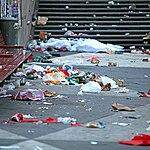 Tych śmieci tu nie ma. W końcu 11 maja nie śmiecimy.