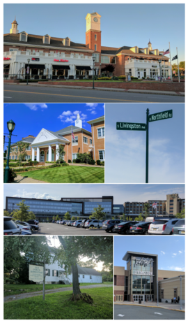 Montage: Livingston Town Center (top row), Town Hall (left row 2), street sign (right row 2), St. Barnabas Medical Center (row 3), Historic Force Homestead (left row 4) and Livingston Mall (right row 4)