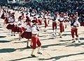 Llamerada Carnaval de Oruro Bolivia.jpg